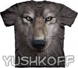 Настоящий волк