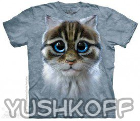 Котенок с большущими глазами на футболке