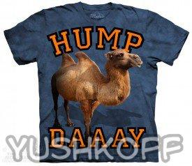 Прекрасный верблюжонок