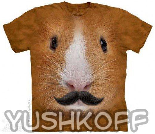 Модные усики у морской свинки! :)))
