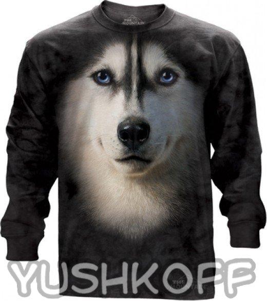 Собака - хаски