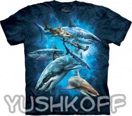 Хорошая футболка с акулами для ребенка