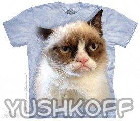 Кот взгрустнул, не обижайте его!