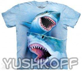 Опасные акулы, остерегайтесь зубикофф! ;-)